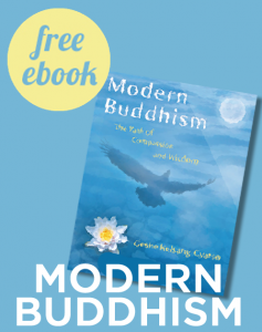 modernbuddhism_ebook-237x300